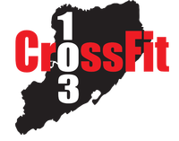 Fitness Professional CrossFit 103 in Staten Island